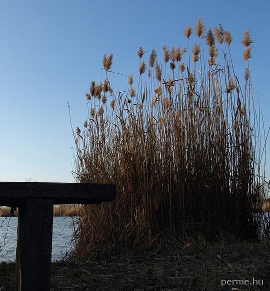 Császárszállási tó